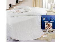 Одеяло шелковое Silk Place 110х140 всесезонное