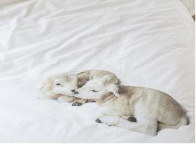 Прикольное постельное белье SNURK ОВЕЧКИ