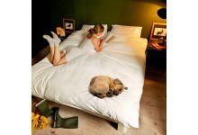 Прикольное постельное белье Newtone СОБАЧКА 1.5-спальное